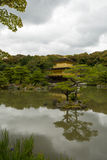 золотистый висок павильона kyoto kinkakuji стоковое фото rf