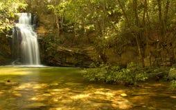 золотистый водопад стоковое изображение rf