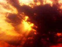 Золотистый заход солнца Стоковое Изображение