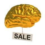 Золотистый мозг Стоковая Фотография RF