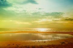 Золотистый пляж Стоковые Изображения