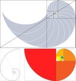 золотистый раздел Стоковые Изображения RF