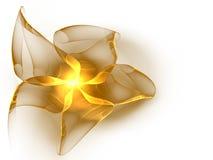 золотистый шелк тесемки Стоковое Фото
