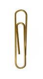 золотистый штапель Стоковое фото RF