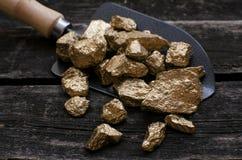 Золотодобывающий рудник Золотодобытчик Золотая руда в лопаткоулавливателе стоковые изображения
