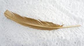 Золотое перо золота изолированное на белой предпосылке шнурка стоковая фотография