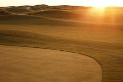 Золотое поле гольфа на заходе солнца Стоковое Изображение