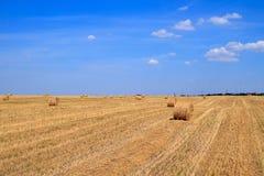 Золотое поле стерни соломы в осени Стоковое фото RF