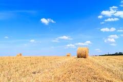 Золотое поле стерни соломы в осени Стоковые Изображения RF