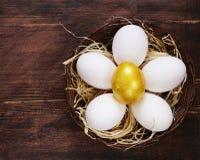 Золотое яичко и белые яичка стоковое изображение rf