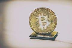 Золотое Bitcoin на процессоре компьютера Место для текста там тонизируют стоковые фото