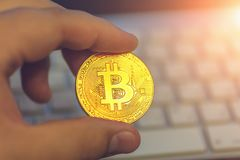 Золотое bitcoin cryptocurrency в руке человека на предпосылке клавиатуры стоковые изображения rf