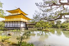 Золотой висок Kinkakuji павильона в Киото Японии стоковые фотографии rf