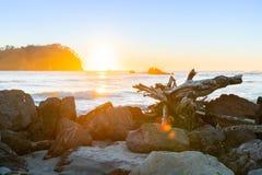 Золотой восход солнца над пляжем Maunganui держателя стоковые фото