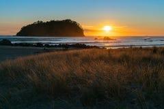Золотой восход солнца над пляжем Maunganui держателя стоковая фотография