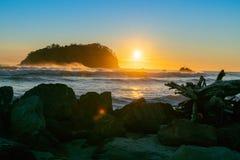 Золотой восход солнца над пляжем Maunganui держателя стоковое изображение rf
