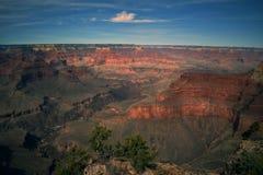 Золотой заход солнца бросает над гранд-каньоном стоковое изображение rf