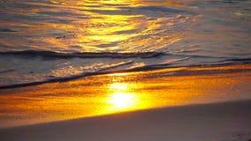 Золотой заход солнца на береге океана сток-видео