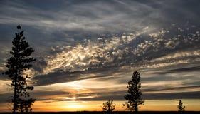 Золотой заход солнца с голубыми штриховатостями облаков Стоковое фото RF