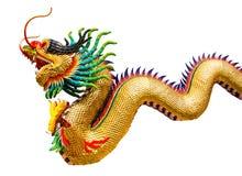 Золотой изолят дракона Стоковое фото RF