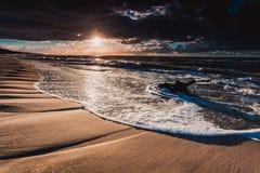 Золотой корень захода солнца и дерева на пляже Стоковое Изображение