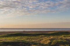 Золотой ландшафт береговой линии весны часа, парк Aleksandria, Санкт-Петербург Стоковое Фото