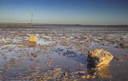 Золотой свет захода солнца над тинным побережьем стоковые фотографии rf