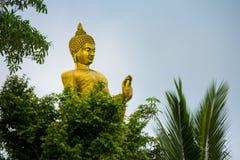 Золото большой Будда в виске горы высшая точка Koh Sumui стоковое изображение