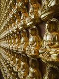 золото Будды много статуя стороны перспективы Стоковые Изображения