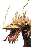 Золото дракона на белизне Стоковое Изображение