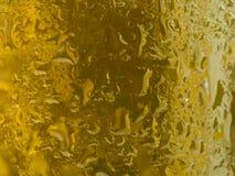 золото конденсации бутылки пива Стоковая Фотография RF