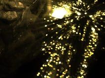 Золото монеток сокровища Стоковое Изображение
