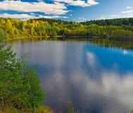 золото осени Стоковые Фото