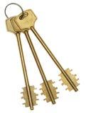 золото пользуется ключом 3 Стоковые Изображения RF