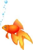 золото рыб иллюстрация штока