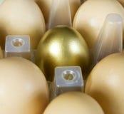 золото яичка Стоковые Фотографии RF