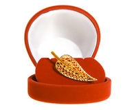 золото brooch Стоковое Фото