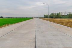 Золотые и зеленые цвета риса fields на противоположности конкретной дороги Стоковое фото RF