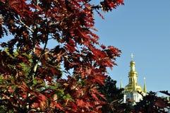 Золотые куполы собора с крестами против голубого неба Стоковая Фотография