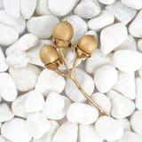 Золотые лист изолированные на белом камне булыжник Листовое золото окно текстуры детали предпосылки старое деревянное стоковые изображения