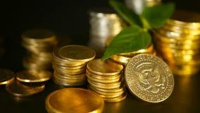 Золотые монетки и зеленые лист ростка на черной предпосылке Успех дела финансов, ипотеки и концепций банка сток-видео