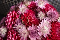 Золотые обручальные кольца лежат в бутоне красного георгина Ложь обручальных колец на бутоне цветка Стоковое Изображение RF