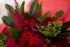 Золотые обручальные кольца лежат в бутоне красной розы Ложь обручальных колец на бутоне цветка Стоковые Фото