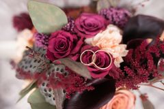 Золотые обручальные кольца лежат в бутоне розы пинка Ложь обручальных колец на бутоне цветка Стоковая Фотография RF