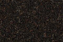 Золотые подсказки Цейлон черный чай стоковое изображение rf