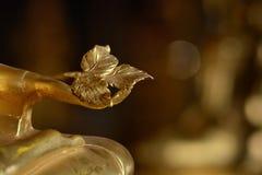 Золотые руки buddish положения в стиле искусства, Wat Krathum Suea Стоковые Изображения