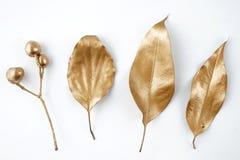 Золотые элементы дизайна лист и плодоовощ Элементы для приглашения, карточки украшения свадьбы, день валентинок, поздравительные  Стоковое Изображение RF