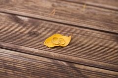 2 золотых обручального кольца лежат на желтых лист осени Стоковая Фотография RF