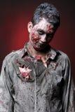 зомби Стоковые Фотографии RF