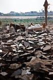 зона Газа граници стоковые изображения rf